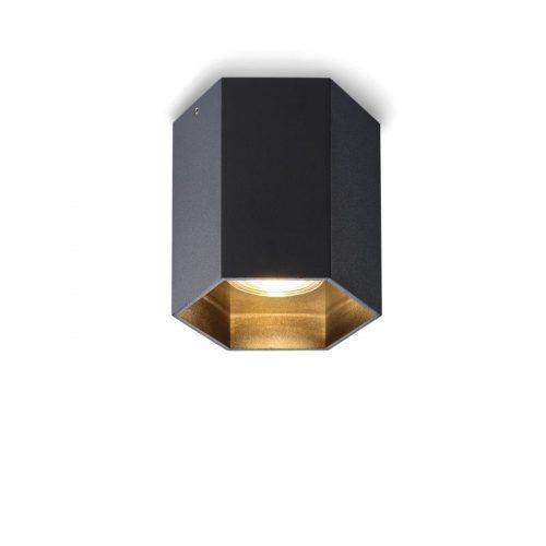 LBL251-BK 5 watt black surface mounted LED downlight